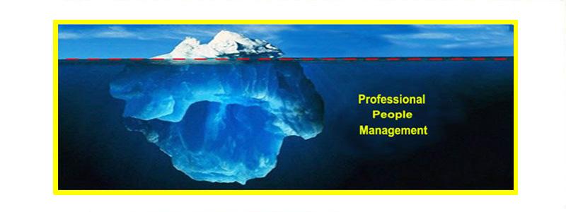 مدل رفتاری دیسک/زمانی که فردی با هر مدل رفتاری دیسک وارد سازمان شما می شود بخاطر عدم تجربه ومهارت مدیریت وی بسیار ساده است. اما زمانی ما نیاز به مدیریت حرفه ای خواهیم داشت که وی در کار خود ماهر شده و تجربه لازم را کسب کرده است. در این شرایط برای مدیریت حرفه ای وی باید باید اطلاعات کاملی از مدل رفتاری دیسک او را داشته باشیم و مطابق با این نکنیک بهترین نقش رهبری را ایفا کنیم.
